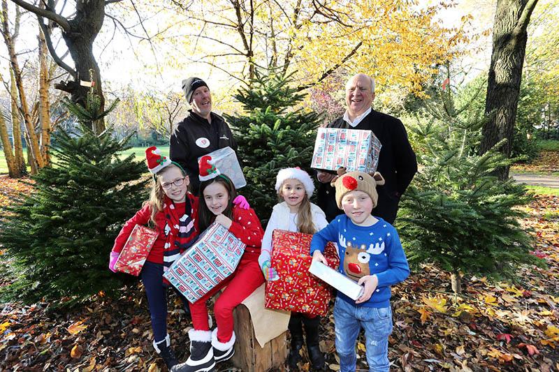 Christmas Trees for Jack & Jill