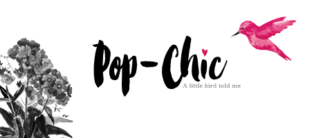 popup-image_Logo