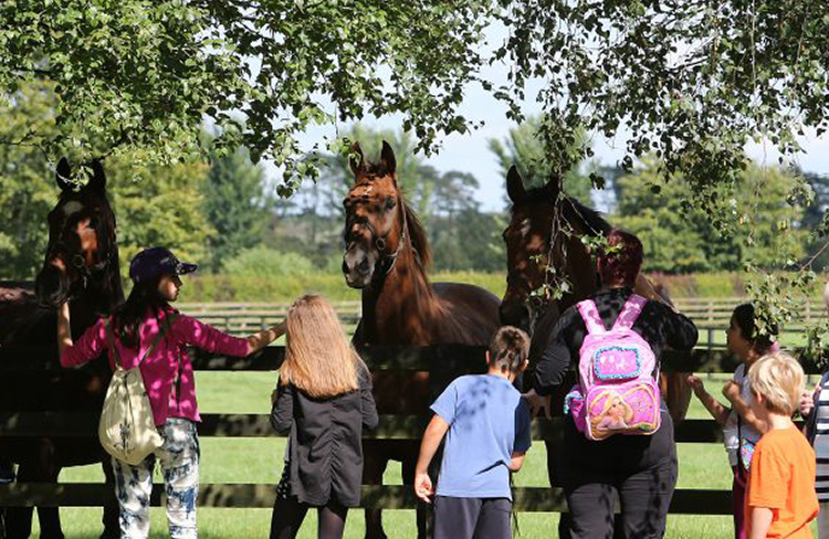 National Stud and Gardens Family Pass